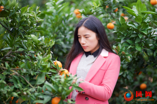 湖南省第十二次妇女代表大会 妇代会 何静