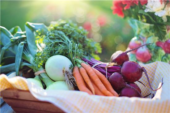 有机食品 普通食品 防癌