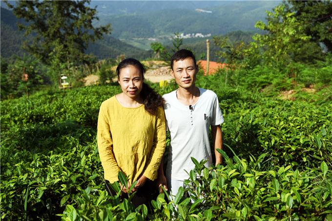 仙峰茶厂员工李闻(左)、邝载明夫妇.JPG