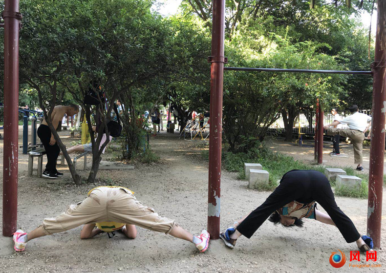 三伏天 锻炼 高温 烈士公园
