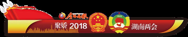 湖南两会她声音 政协女委员 2018湖南两会