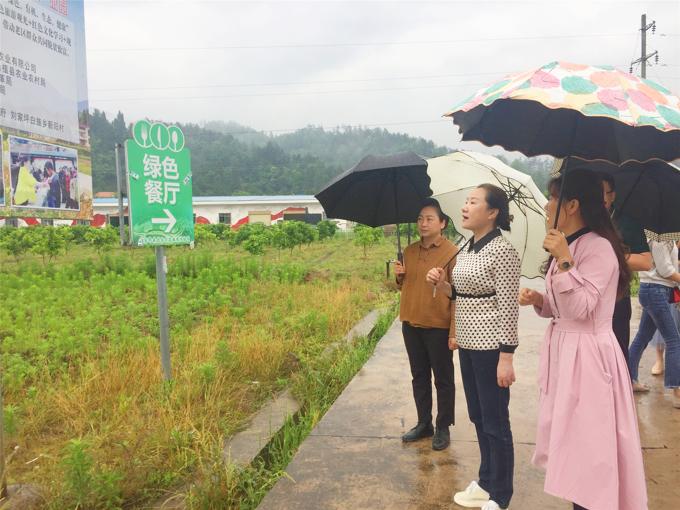 姜欣在禾佳生态农业有限公司调研企业带动农户脱贫增收的情况.jpg
